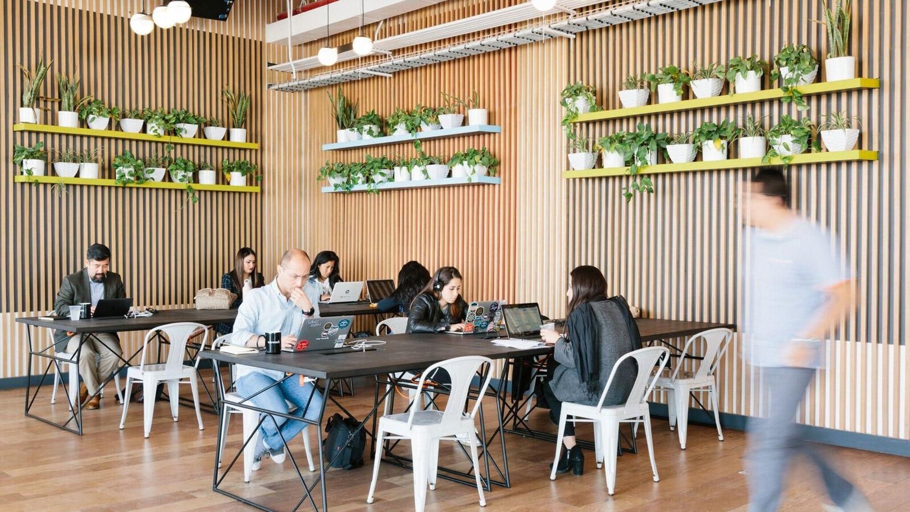 Students study coding in Toronto